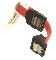 Short SATA S-R Cable-Red 8""